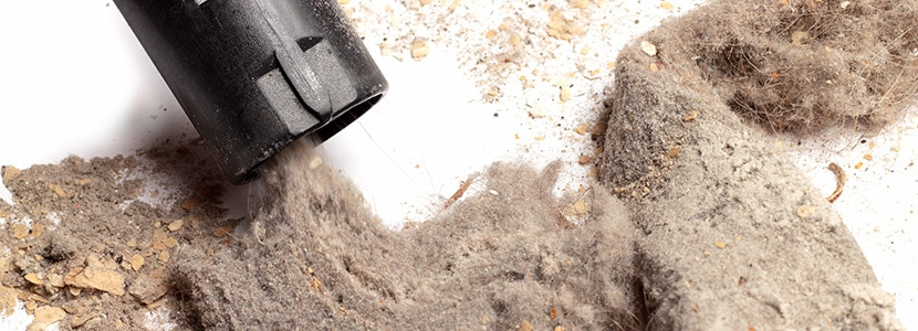Photo of dust collected by Speedy Floor Removal.