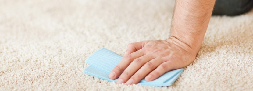 Photo of man working to keep his carpets clean
