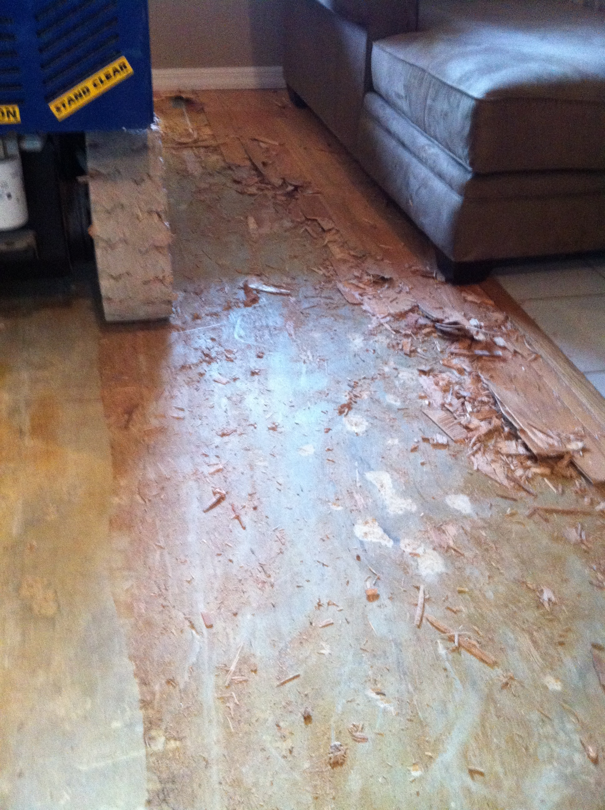 Image of wood floor glue removal