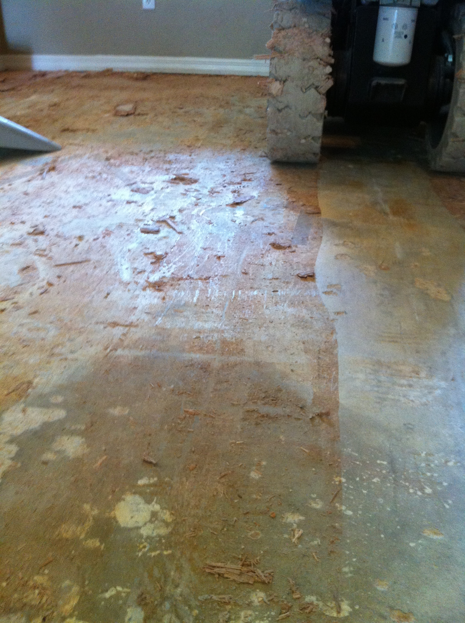 Image of wood floor glue removal revealing subfloor underneath